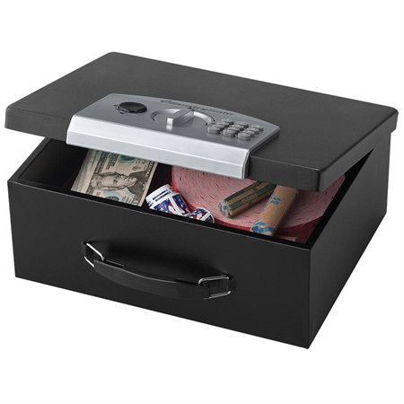 ESB-3 Electronic Security Box