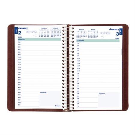 Daily Diary (2020)