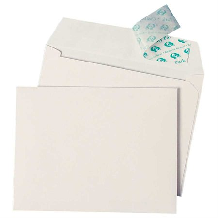 Redi-Strip™ Envelope