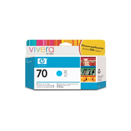 HP 70 Inkjet Cartridge
