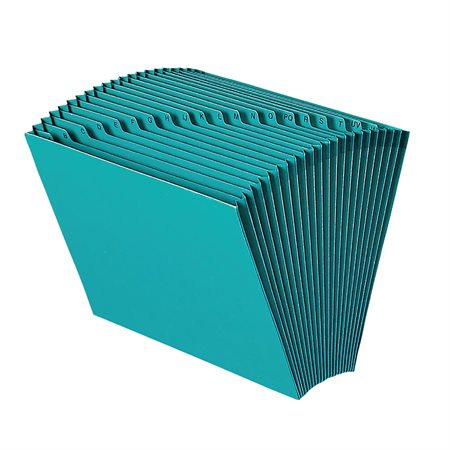 Coloured Expanding File
