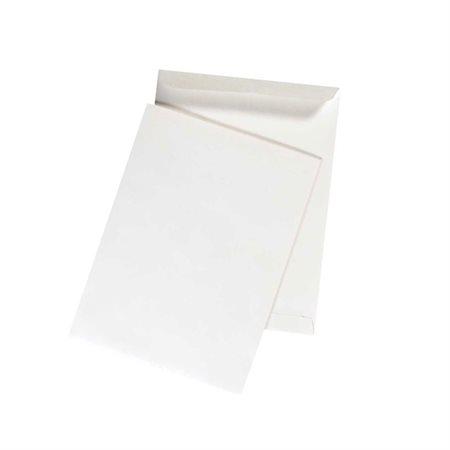 Catalogue Envelope