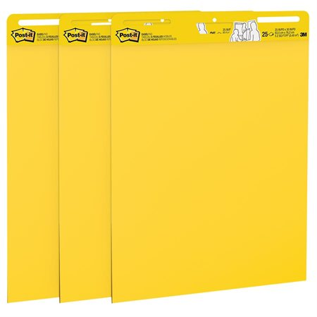 Post-it® Super Sticky Easel Pad