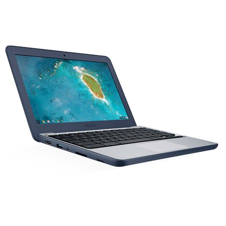Ordinateur portable Chromebook C202SA