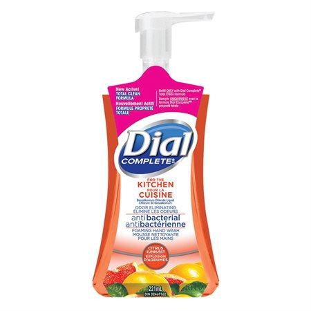 Nettoyant moussant pour les mains