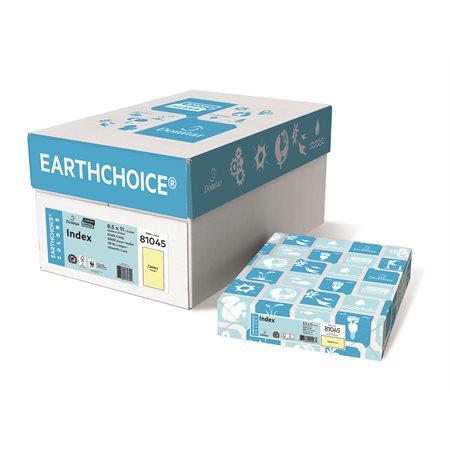 Carton EarthChoice®