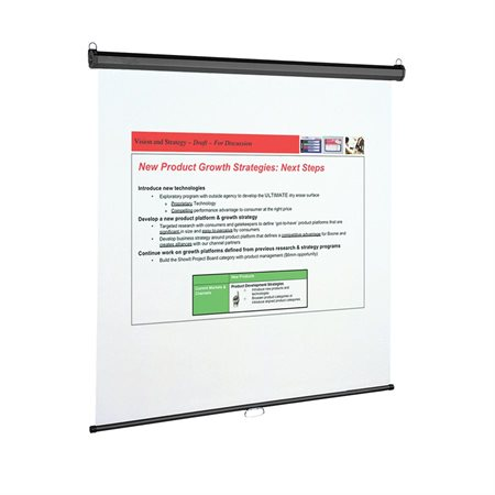 Wall or Ceiling Projection Screen